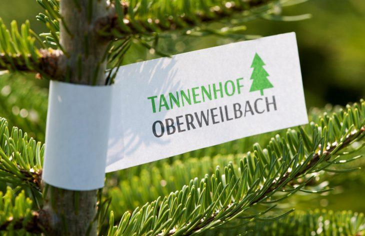 Tannenbaumverkauf Würstle Gartenland