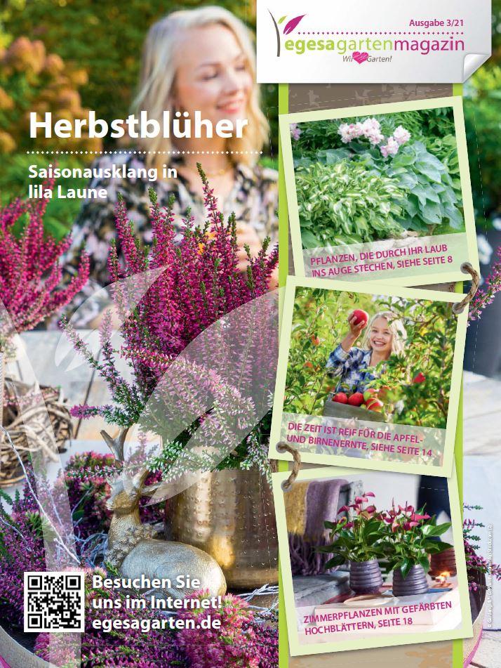Gartenmagazin 03/2021